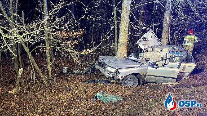 2-letnia dziewczynka zginęła, rodzice są ranni. Ich auto roztrzaskało się na drzewie. OSP Ochotnicza Straż Pożarna