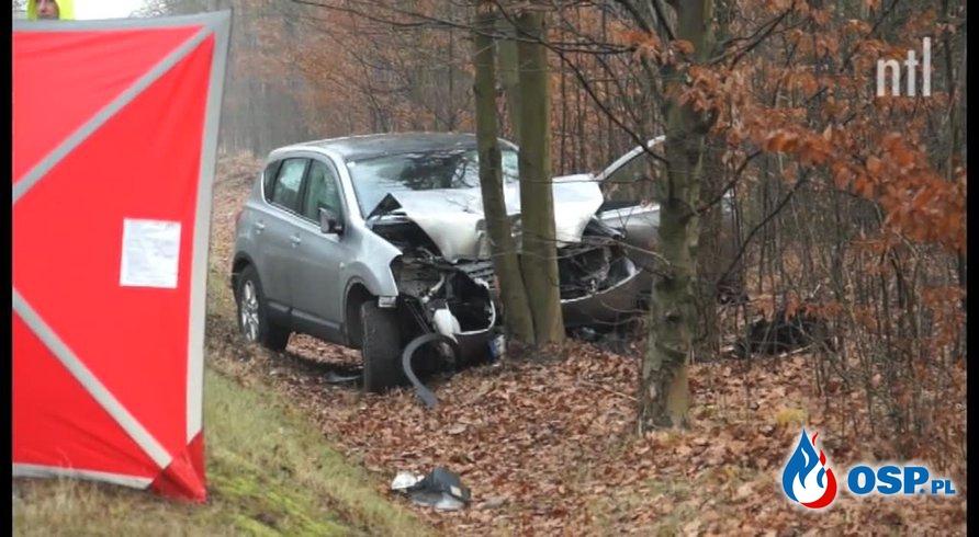 Tragedia pod Piotrkowem. Kobieta próbowała ominąć jelenia, uderzyła w drzewo. OSP Ochotnicza Straż Pożarna