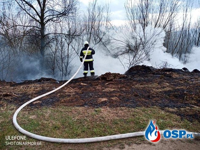 Pożar dzikiego wysypiska śmieci OSP Ochotnicza Straż Pożarna