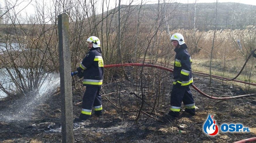Pożar trawy w miejscowości Dalanówek OSP Ochotnicza Straż Pożarna
