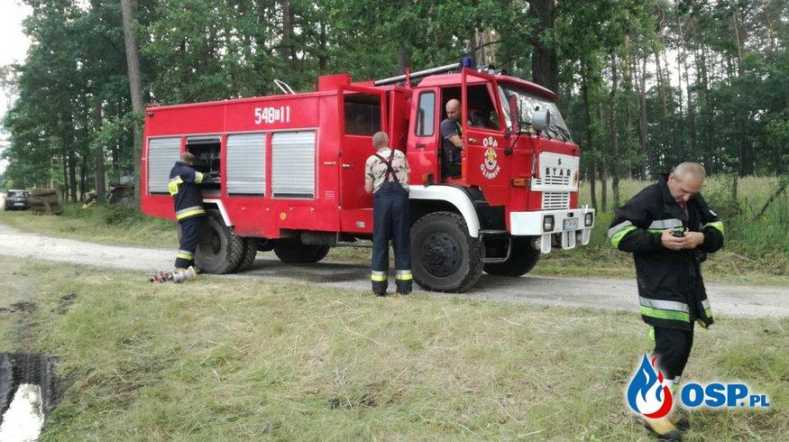 Pożar 8 ha lasu w powiecie tomaszowskim. OSP Ochotnicza Straż Pożarna