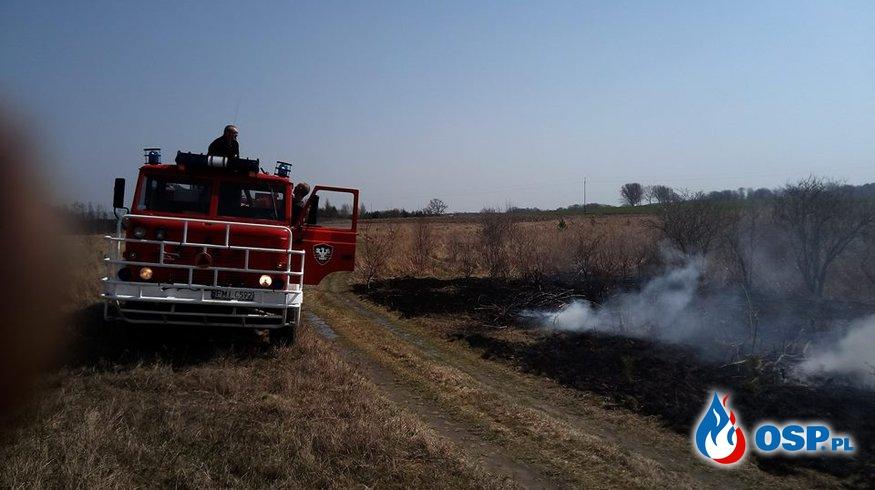 Pożar suchych traw. OSP Ochotnicza Straż Pożarna