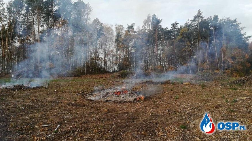 Pożar lasu OSP Ochotnicza Straż Pożarna