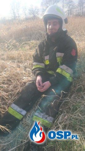 SPŁONĘŁO OKOŁO 20 ha OSP Ochotnicza Straż Pożarna