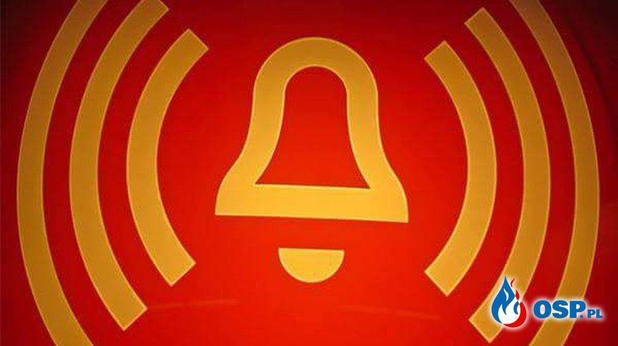 Gniado szerszeni OSP Ochotnicza Straż Pożarna