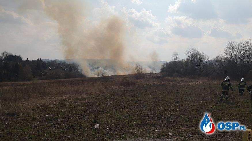 Kolejny pożar suchej trawy w tym miesiącu OSP Ochotnicza Straż Pożarna