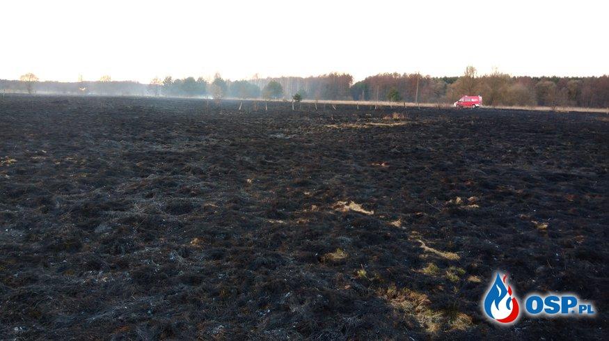 Kolejne dwa pożary traw jednego dnia OSP Ochotnicza Straż Pożarna