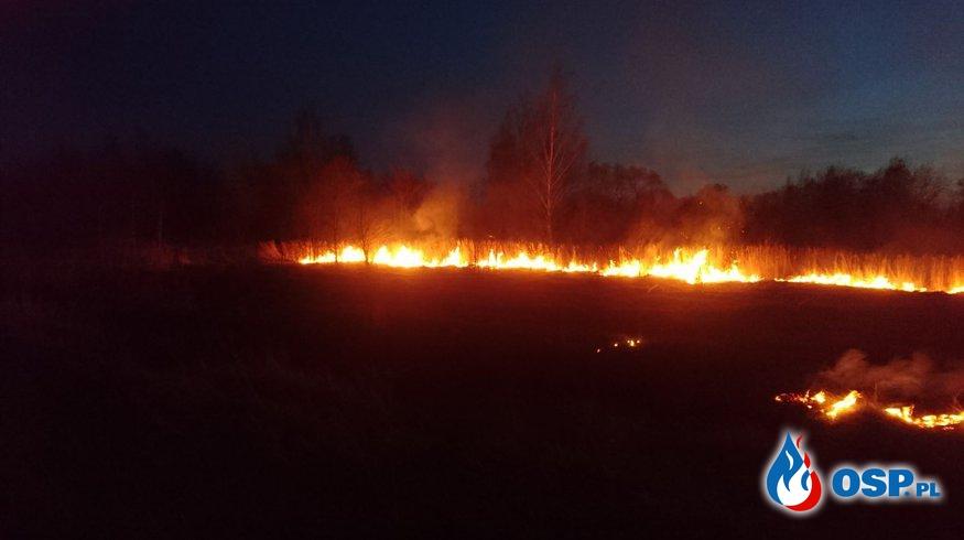 Pożary traw 31.03.17 OSP Ochotnicza Straż Pożarna