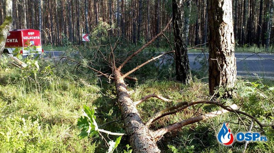 #2 Inne miejscowe zagrożenie - powalone drzewo OSP Ochotnicza Straż Pożarna