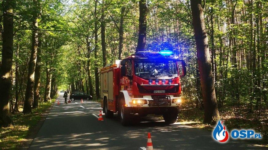 Wiszący konar OSP Ochotnicza Straż Pożarna