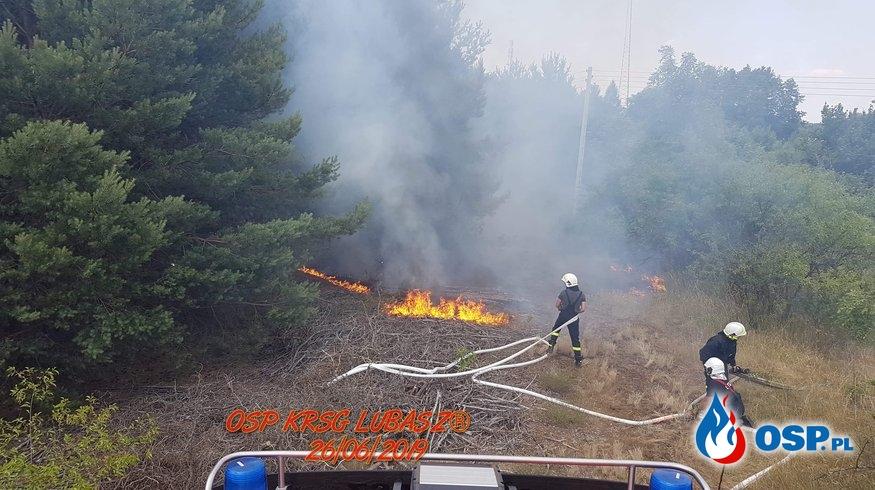 Dwa pożary Lasu w Gminie Lubasz OSP Ochotnicza Straż Pożarna