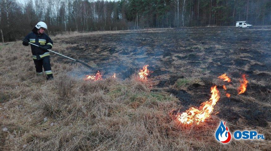Pożar nieużytków OSP Ochotnicza Straż Pożarna