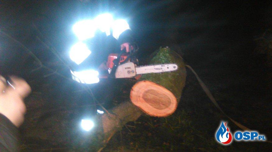 Wyjazd do drzewa OSP Ochotnicza Straż Pożarna