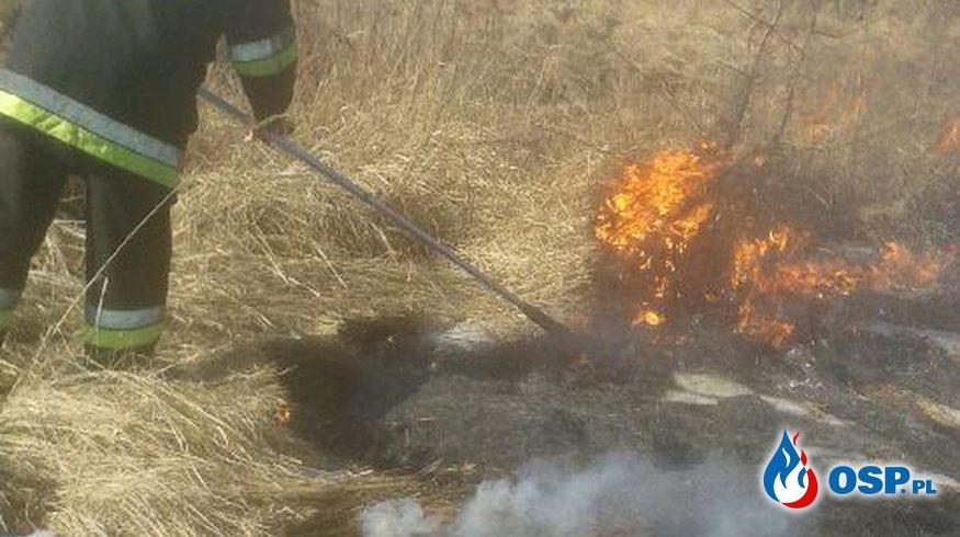 Sezon na wypalanie traw A.D. 2017 - otwarty. OSP Ochotnicza Straż Pożarna