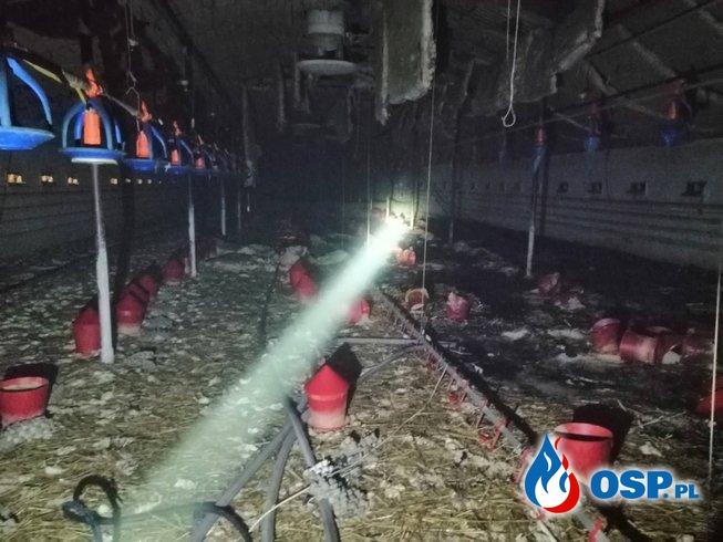 Pożar kurnika w miejscowości Samborowo OSP Ochotnicza Straż Pożarna