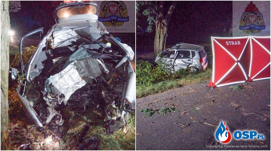 Młody kierowca zginął w Borysławiu. Auto uderzyło w drzewo. OSP Ochotnicza Straż Pożarna