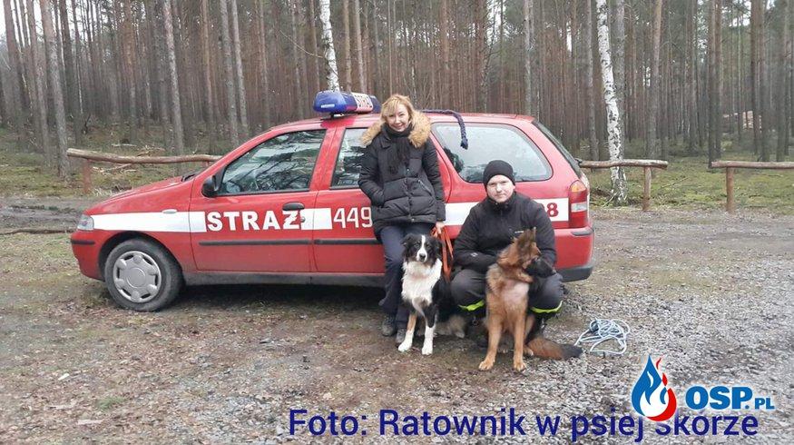 Poszukiwania z PSEM oraz GPS  OSP Ochotnicza Straż Pożarna