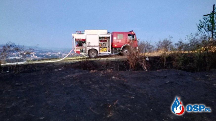 Pożar lasu na Baraniej Górace przy granicy Czeskiej OSP Ochotnicza Straż Pożarna