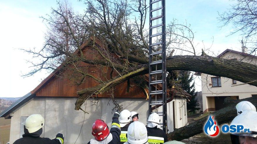 Skutki silnego wiatru halnego OSP Ochotnicza Straż Pożarna