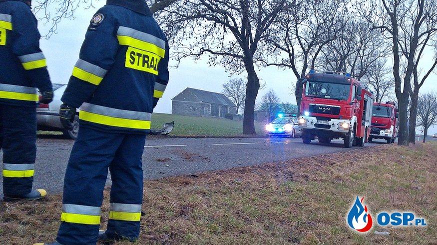 Samochód uderzył w drzewo w Orchowie OSP Ochotnicza Straż Pożarna