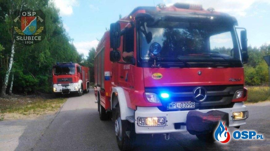 Kłęby dymu nad lasem OSP Ochotnicza Straż Pożarna