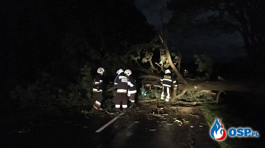 POWALONE DRZEWA  OSP Ochotnicza Straż Pożarna