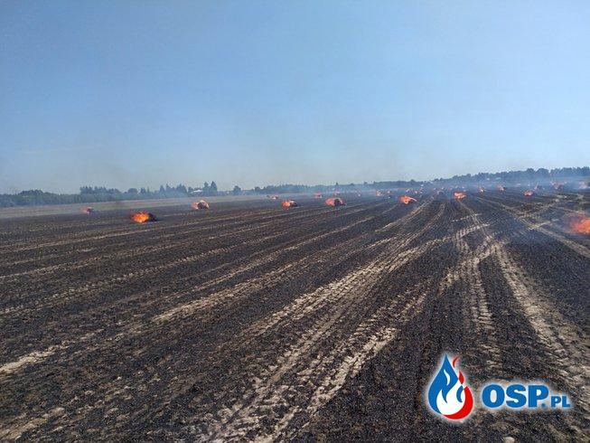 Działania ratowniczo-gaśnicze sierpień OSP Ochotnicza Straż Pożarna