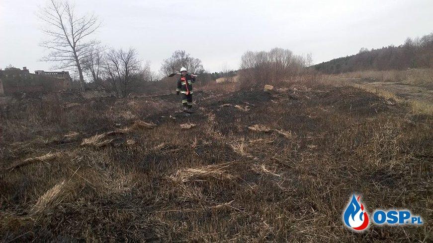 Miniony tydzień - był bardzo pracowity dla Mroczkowskich Strażaków... OSP Ochotnicza Straż Pożarna