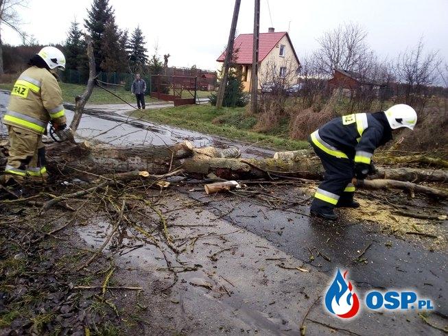 Usuwanie skutków wichury OSP Ochotnicza Straż Pożarna