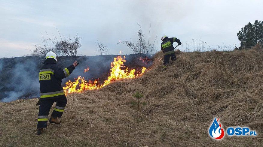Palący PROBLEM mieszkańców Gminy Bliżyn. STOP Wypalaniu TRAW! OSP Ochotnicza Straż Pożarna