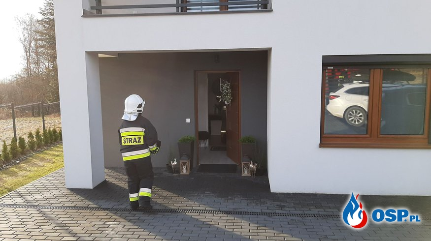 Sowa w przewodzie dymowym - 13 marca 2021r. OSP Ochotnicza Straż Pożarna