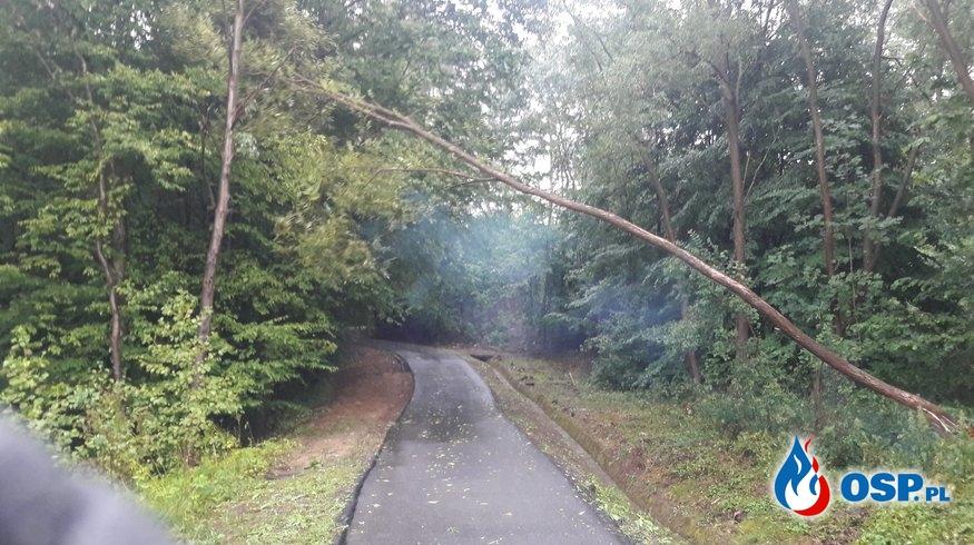 Gwałtowna burza OSP Ochotnicza Straż Pożarna