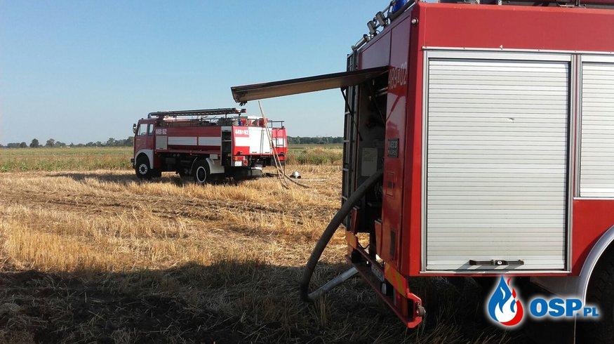 Pożar pola i suchej trawy blisko lasu OSP Ochotnicza Straż Pożarna