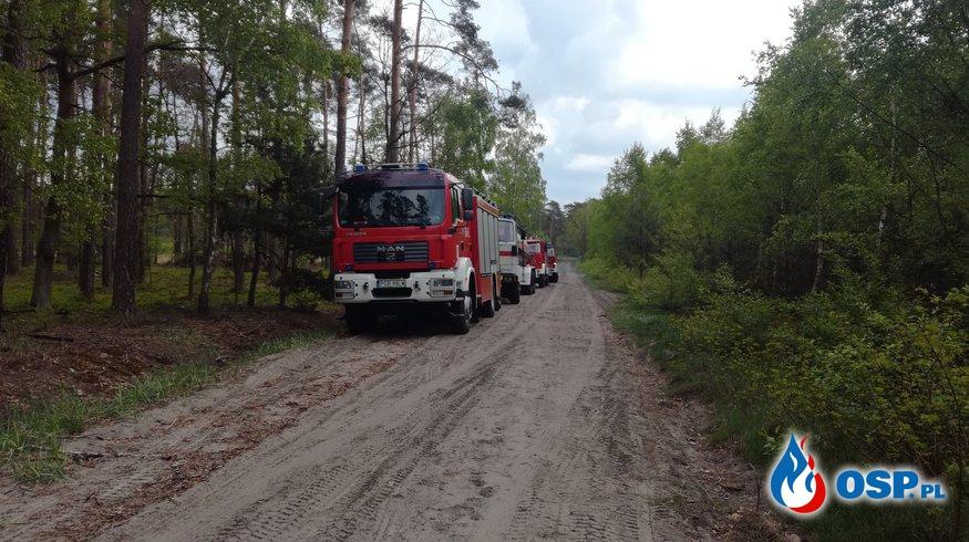Manewry - las w Bogusławkach OSP Ochotnicza Straż Pożarna