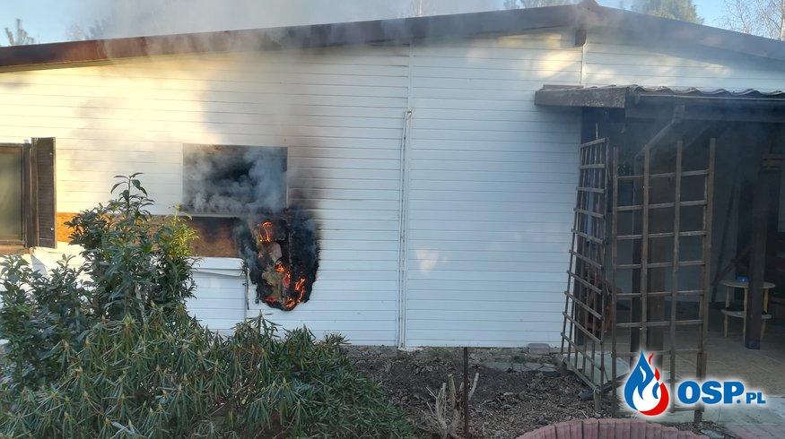 Pożar domku letniskowego. OSP Ochotnicza Straż Pożarna