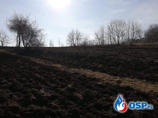 Zdarzenie numer 4/2019 OSP Ochotnicza Straż Pożarna