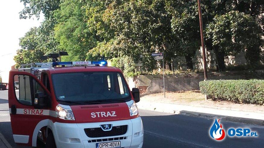 Oberwany kabel telefoniczny leżący na drodze w Białej OSP Ochotnicza Straż Pożarna