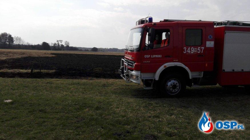 Pożar traw - OSP LIPNIKI (14.04.2018r.) OSP Ochotnicza Straż Pożarna