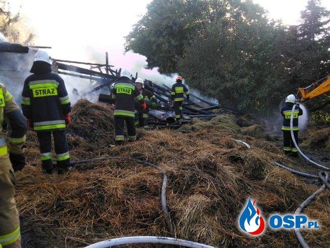 10 zastępów strażaków gasiło płonący budynek gospodarczy w Szczereży OSP Ochotnicza Straż Pożarna