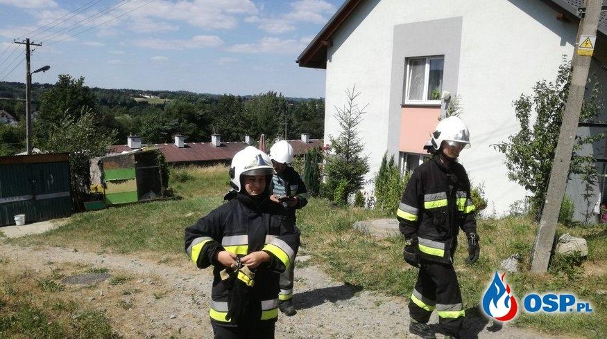 Pożar śmieci w zaroślach - 3 lipca 2019r. OSP Ochotnicza Straż Pożarna