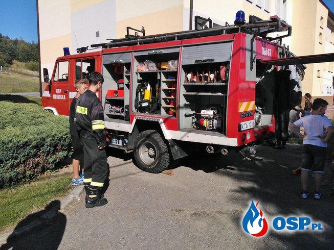 Piknik dla Adasia OSP Ochotnicza Straż Pożarna