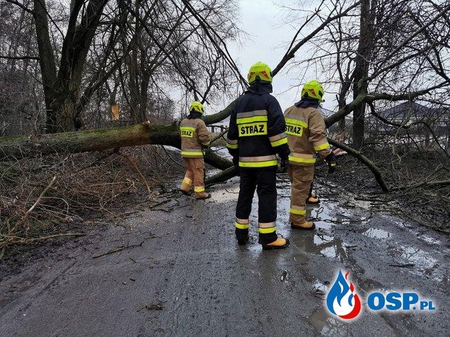 Wiatrołomy - wyjazdy nr. 5 i 6 w roku 2020. OSP Ochotnicza Straż Pożarna