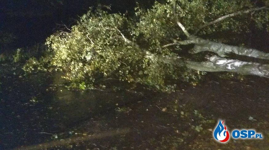 Skutki Orkanu, kilkanaście interwencji naszej jednostki OSP Ochotnicza Straż Pożarna