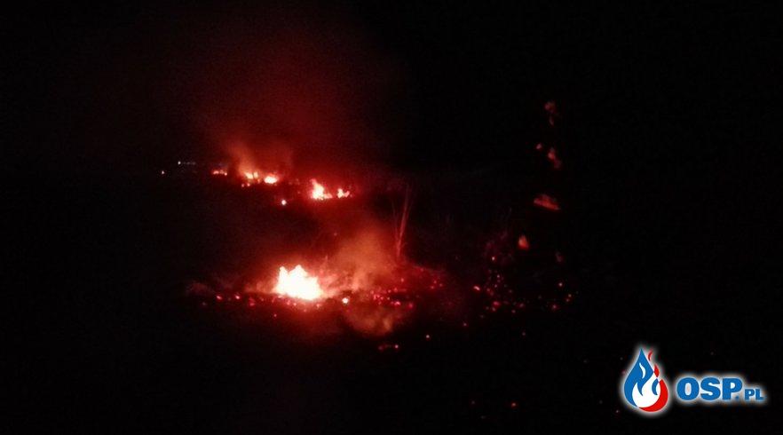 pożar traw Niedary OSP Ochotnicza Straż Pożarna