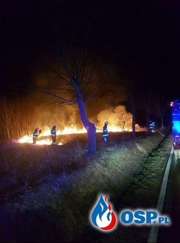 Pożar traw w miejscowości Bóbrka-Pasze OSP Ochotnicza Straż Pożarna