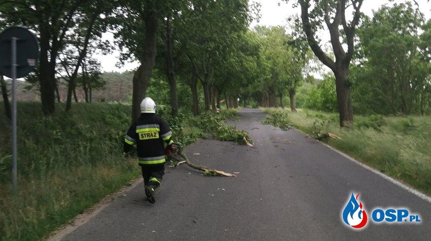 Droga Wojewódzka nr 125 OSP Ochotnicza Straż Pożarna
