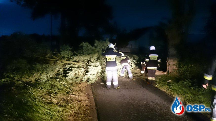Zablokowana droga - przewrócone drzewo OSP Ochotnicza Straż Pożarna
