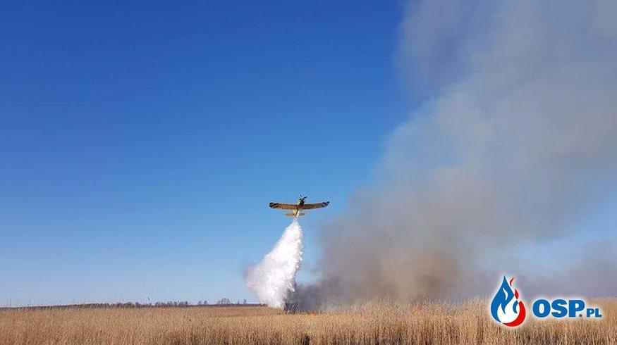 Pożar w Biebrzańskim parku Narodowym OSP Ochotnicza Straż Pożarna