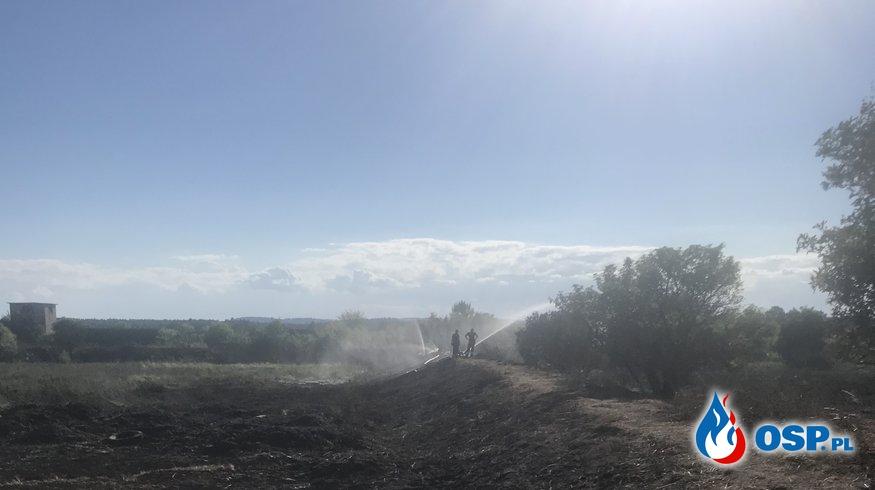 Piętnastogodzinne dogaszanie torfowiska w miejscowości Bara OSP Ochotnicza Straż Pożarna