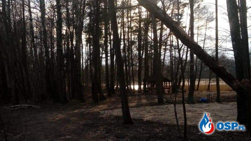 Wyjazd do pochylonego drzewa plaża wiejska 1.03.2020 OSP Ochotnicza Straż Pożarna
